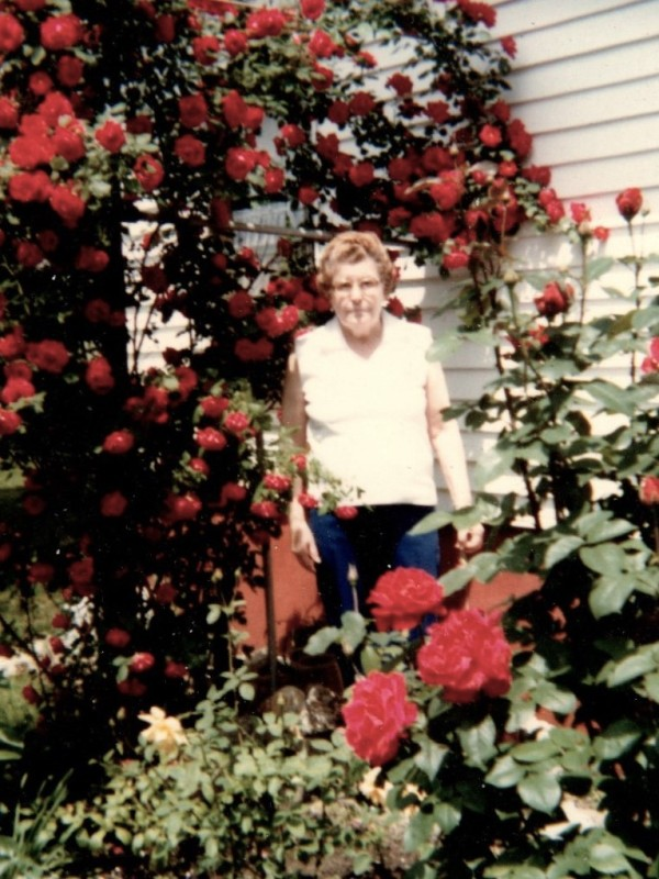 Photo of my grandmother in her rose bed